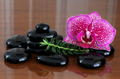 Zen basalt stones  and orchid. Royalty Free Stock Photos