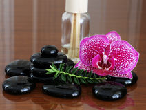 Zen basalt stones  and orchid.. Royalty Free Stock Photo