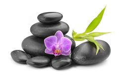 Zen basalt stones ,orchid and bamboo. On white royalty free stock images
