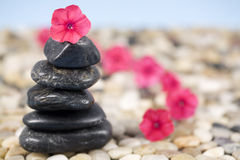 Zen Beauty Stock Image