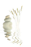 Zen Beauty. Zen abstract of natural gray spa stones in perfect balance, with wild grass stalks and reflection over rippled water, against white background Stock Photography