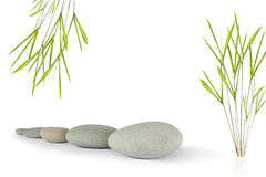 Zen Beauty Royalty Free Stock Photography