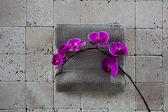 Zen beauty still-life with pink orchids set on grey towel Stock Photos