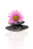 Zen-Behandlung Stockfoto