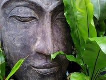 Zen, Buddha, Relax, Tranquility Stock Photos