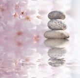 Zen buddhistische Steine und blosso lizenzfreies stockbild