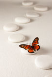 Zen butterfly Royalty Free Stock Images