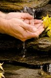 Zen Cleansing Stock Photos
