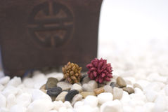 Zen colored pebbles Stock Photo