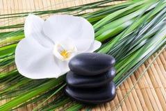 Zen-como. Foto de Stock