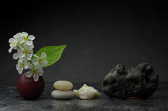 Zen composition Royalty Free Stock Image