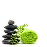 Zen concept with green leaves Stock Images