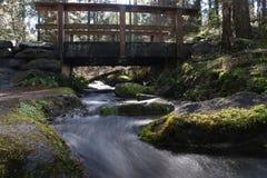 Zen d'île de Vancouver Photo libre de droits