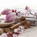 Zen decor with flowers for spa treatment Royalty Free Stock Photos