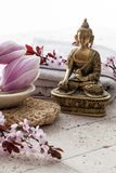 Zen decor with spring flowers for beauty center Stock Photo