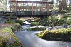 Zen dell'isola di Vancouver Fotografia Stock