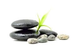 Zen do conceito dos termas Foto de Stock