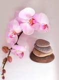 Zen dos TERMAS Imagem de Stock Royalty Free