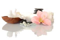 Zen e stazione termale di Wellness Immagini Stock