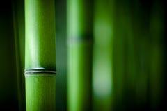 zen en bambou Images libres de droits
