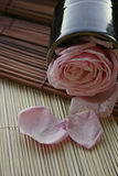 Zen Flower. Pink rose and a Japanese teacup Stock Images