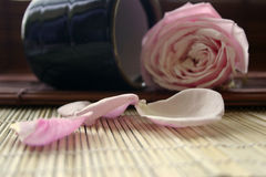 Zen Flower. Pink rose and a japanese teacup Royalty Free Stock Photos