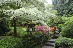 Zen Flower Garden Royaltyfri Fotografi