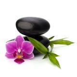 zen för brunnsort för pebbles för jämviktsbegreppssjukvård zen för brunnsort för pebbles för bambubegreppssjukvård Arkivbild