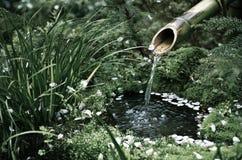 At a Zen Garden Stock Images