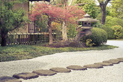 Zen garden. Japanese zen garden with scenic stone pathway and red maple tree behind Royalty Free Stock Images