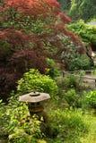 Zen garden. Japanese zen garden background with small stone lantern and red maple tree Stock Photo