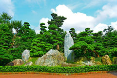 Zen garden. Chinese zen garden with exotic and colorful spring foliage Royalty Free Stock Photography