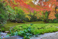 Zen garden at fall season at japan at Rurikoin Stock Image