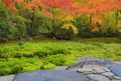 Zen garden at fall season at japan at Rurikoin Royalty Free Stock Photography