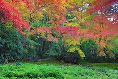 Zen garden at fall season at japan at Rurikoin Stock Image