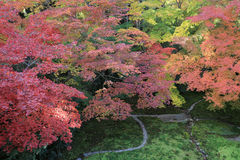 Zen garden at fall season at japan at Rurikoin. A zen garden at fall season at japan at Rurikoin Stock Photo