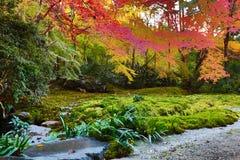 Zen garden at fall season at japan at Rurikoin Stock Images