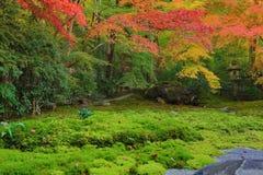Zen garden at fall season at japan at Rurikoin. A zen garden at fall season at japan at Rurikoin Royalty Free Stock Images