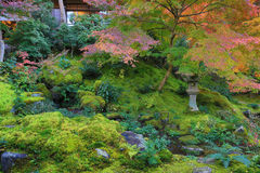 Zen garden at fall season at japan at Rurikoin Royalty Free Stock Image