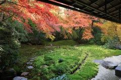 Zen garden at fall season at japan at Rurikoin Stock Photo