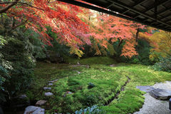 Zen garden at fall season at japan at Rurikoin Stock Photos