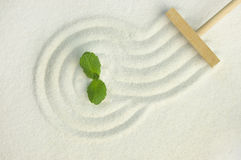 Zen garden with green leaf Stock Photo