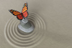 Zen garden meditation stone with butterfly Stock Image
