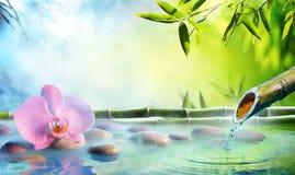 Zen Garden - Orchid In Japanese Fountain Stock Image