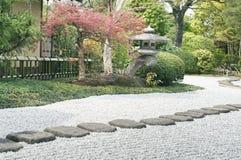 Zen garden pathway. Stone steps in zen garden pathway with stone lantern and red maple tree Stock Images