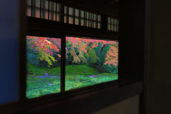 Zen garden at Rurikoin, all viewed through a window. A zen garden at fall season at japan at Rurikoin Stock Image