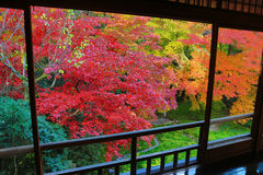 Zen garden at Rurikoin, all viewed through a window. A zen garden at fall season at japan at Rurikoin Royalty Free Stock Image