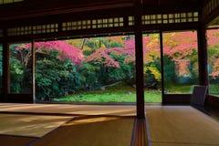 Zen garden at Rurikoin, all viewed through a window. A zen garden at fall season at japan at Rurikoin Stock Photos