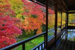 Zen garden at Rurikoin, all viewed through a window. A zen garden at fall season at japan at Rurikoin Royalty Free Stock Photos