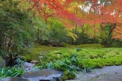 Zen garden at Rurikoin, all viewed through a window. A zen garden at fall season at japan at Rurikoin Stock Photo